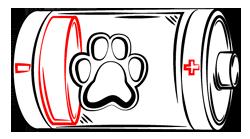 Dog Energy Level