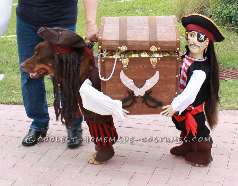 11 best diy dog halloween costumes for 2016 paws n pups starbucks dog costume from coolest homemade costumes solutioingenieria Image collections