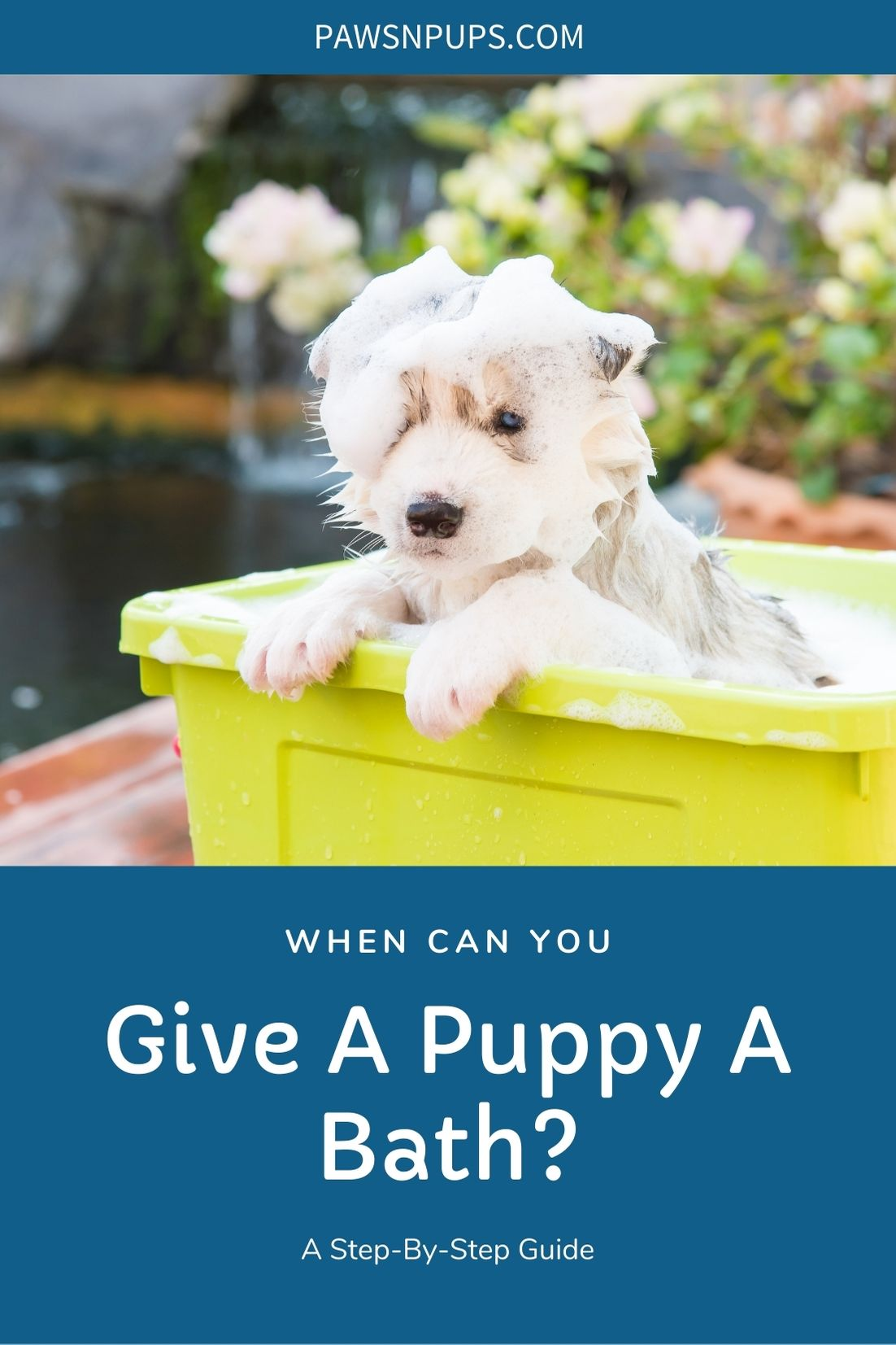 When Can You Give A Puppy A Bath - A Step-by-Step Guide - Puppy taking a bath in yellow tub covered in soap.